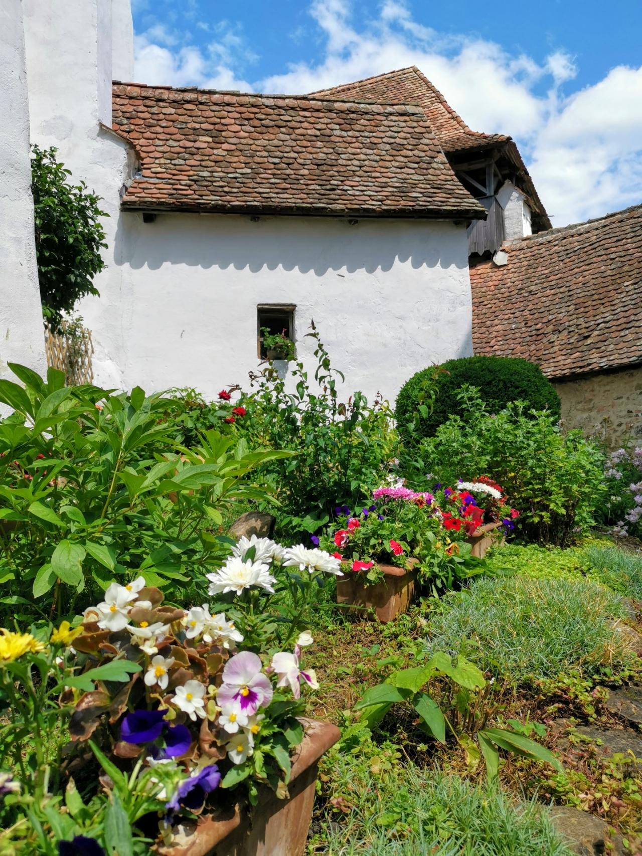 Flori biserica fortificata