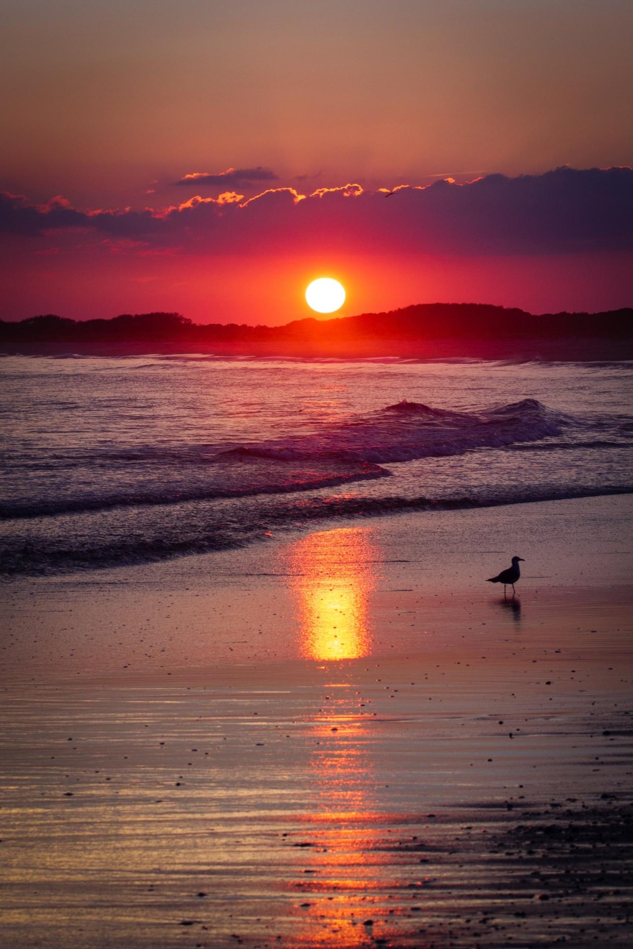 asfintit de soare la mare